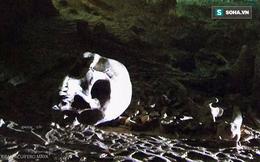 """Lặn xuống hang động lớn nhất thế giới, phát hiện """"thế giới"""" bí ẩn của người Maya"""