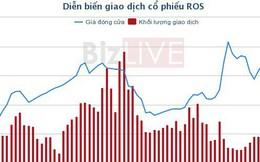 ROS lên kế hoạch trả cổ tức 20% năm 2018