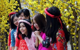 """Trai xinh gái đẹp tấp nập chụp hình, xin chữ ở """"phố Ông Đồ"""" Sài Gòn"""