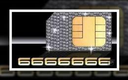 Đố bạn biết số điện thoại đắt nhất thế giới có giá bao nhiêu?