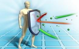 Tại sao sinh hoạt điều độ mà vẫn đau ốm? Câu trả lời nằm ở hệ miễn dịch của bạn