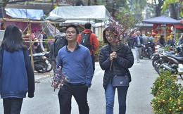 Nhộn nhịp chợ hoa Hàng Lược trước Tết Nguyên đán