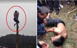 Nam thanh niên rơi từ ngọn chuối xuống đất trong lễ hội xuân: Cục Văn hóa cơ sở yêu cầu báo cáo
