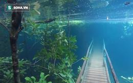 Mưa lớn liên tiếp, con đường du ngoạn ở Brazil bỗng hóa thành sông