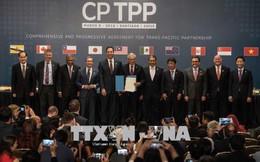 Việt Nam có vai trò quan trọng trong chiến lược CPTPP