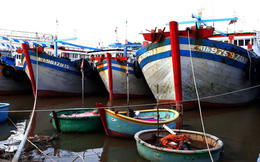 Điều tra hành vi tổ chức đưa ngư dân ra nước ngoài đánh bắt trái phép