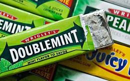 Dự án khiến nhiều người khâm phục: Khi bã kẹo cao su có thể tái chế thành những vật dụng bất ngờ