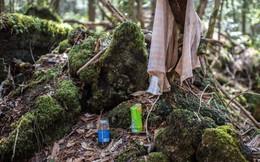 Khu rừng 'tự sát' ở Nhật Bản: Những hình ảnh tưởng chừng chỉ có trong phim kinh dị