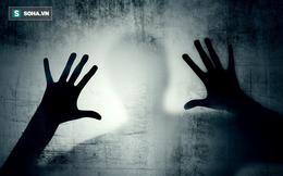 Bộ não chúng ta xử lý các nỗi sợ khác nhau như thế nào?