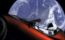Cùng gặp gia đình nhà Musk: mẹ, em trai và em gái của tỷ phú vũ trụ trông ra sao?