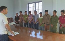 Chặt trộm gỗ quý trong vườn quốc gia, 13 đối tượng bị khởi tố