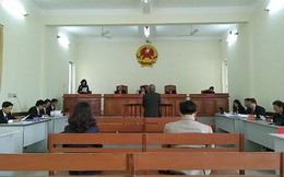 Xử lại vụ Việt kiều kêu oan tội giao cấu vì liệt dương