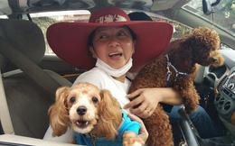 Chú chó Kem cứu 6 người ở chung cư Carina giờ ra sao?