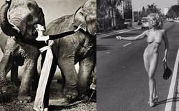 Những bức ảnh thời trang kinh điển và đắt giá của thế kỷ 20, có bức được định giá tới 6,8 tỷ đồng