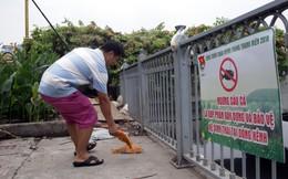Kênh Nhiêu Lộc - Thị Nghè đen ngòm, cá nổi dày đặc người dân vô tư đứng câu
