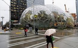 Xem chùm ảnh này chúng ta mới biết vì sao người dân Seattle lại gọi thành phố của mình là Amageddon thay vì Amazonia
