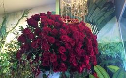 Đại gia Hà Nội chi gần 20 triệu mua 300 bông hồng ngoại tặng bạn gái dịp 8/3