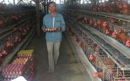Lạ: Việt Nam nhập khẩu trứng gà, muối hằng năm