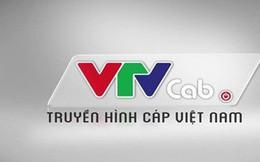 VTV Cab bị huỷ bán đấu giá cổ phần vì sao?