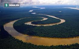 Sông Amazon dài như thế mà tại sao không có bất kỳ một cây cầu nào cả?