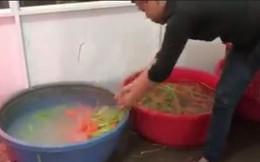 Bắt quả tang vụ dùng hóa chất tẩy trắng 6,3 tấn củ cải ở Sài Gòn