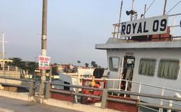 Tàu thủy 'bơi' tự do, tông thẳng cầu Đồng Nai: Xác định nguyên nhân ban đầu