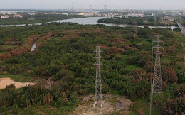 Vụ bán đất dự án Phước Kiển, Nhà Bè: Công ty QCGL nói gì?