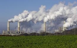 Thế nào là thu hồi Carbon?