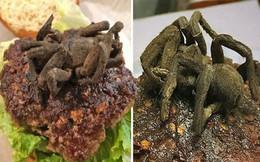 Thảng thốt trước món humbuger nhân nhện độc siêu dị