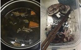 Khoe bạn gái nấu lẩu hải sản đen sì, anh chàng này còn tiết lộ nguyên nhân khiến dân mạng phì cười