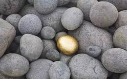 """Nếu bạn chỉ là một """"viên đá"""" chứ không phải là một """"viên vàng"""" thì đừng phàn nàn số phận bất công với mình"""