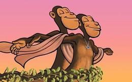 """Tranh cãi: loài khỉ đã """"đi bè"""" cưỡi sóng, vượt đại dương trước con người hàng triệu năm?"""