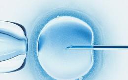 Bác sĩ sử dụng tinh trùng của mình chữa hiếm muộn cho bệnh nhân, bị khởi kiện
