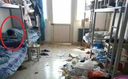 Chuyện sinh viên: Bao lâu thì nên dọn dẹp phòng trọ và bi kịch nếu bạn không làm