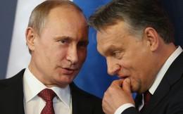 Viktor Orban tái đắc cử là mối lo cho Mỹ và Liên minh châu Âu