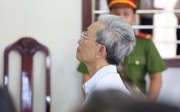 """Vụ ông lão 77 tuổi dâm ô trẻ em thoát án tù giam: """"Đó là sự phỉ báng công lý"""""""