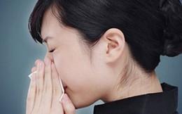 Hắt hơi liên tục là bệnh gì?