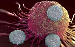 Tổng hợp 15 nguyên tắc phòng chống ung thư và 9 dấu hiệu cảnh báo sớm bạn không nên bỏ qua