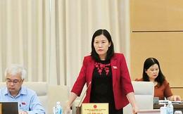 Chủ nhiệm Uỷ ban Tư pháp kiến nghị về vụ án ông già dâm ô với trẻ em