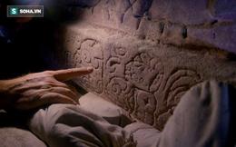 Bí ẩn Vua Rắn, chiến binh tối cao, và giấc mơ về đế quốc Maya hùng mạnh
