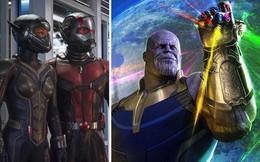 """Trailer mới của """"Người Kiến 2"""" hé lộ tình tiết hậu Avengers: Cuộc chiến Vô cực"""
