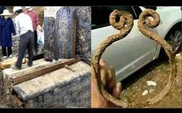 Tranh cãi xung quanh việc phát hiện mộ của Tôn Ngộ Không tại Trung Quốc