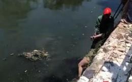 Người dân nhảy xuống sông cứu cô gái trẻ giữa trưa nắng