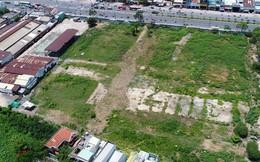 Hàng loạt tập đoàn, tổng công ty bỏ hoang đất