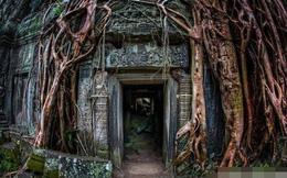 Đằng sau ngôi mộ máu của mưu sĩ Tam Quốc: Mộ tặc ngàn năm không dám xâm phạm vì sợ báo ứng