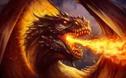 Răng rồng: Từ truyền thuyết đến đời thực và câu chuyện đáng buồn đằng sau