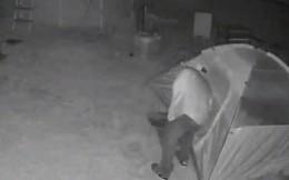 Con gái có kẻ theo dõi, bố lắp camera ở vườn nhà và phát hiện cảnh tượng đáng sợ