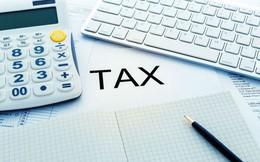 Dự kiến thuế TNDN tại DN có tổng doanh thu dưới 3 tỷ áp dụng mức 15%