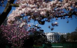 """Những hình ảnh bên trong """"khu vườn bí mật"""" của Nhà Trắng"""