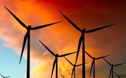 Một bang của Ấn Độ sản xuất điện năng từ gió nhiều hơn cả Thụy Điển, Đan Mạch